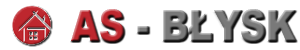 Wizy USA logo